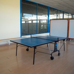 Tenis de mesa img